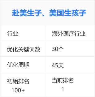 赴美生子,美国生孩子(海外医疗行业)百度seo优化排名案例