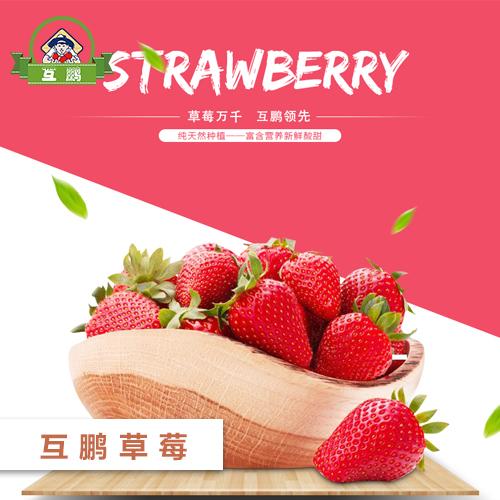 BG大游视讯草莓