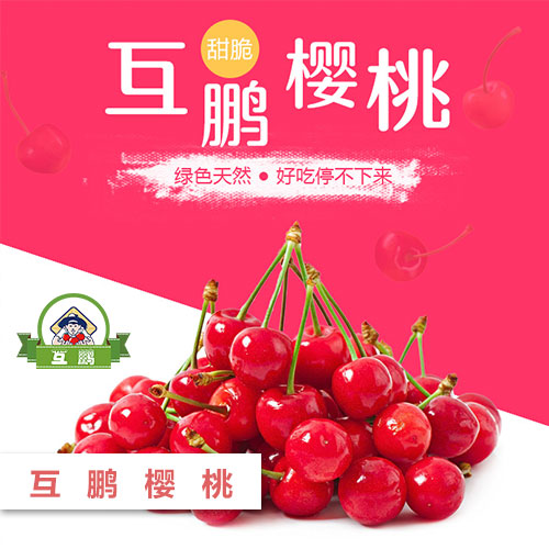 BG大游视讯樱桃