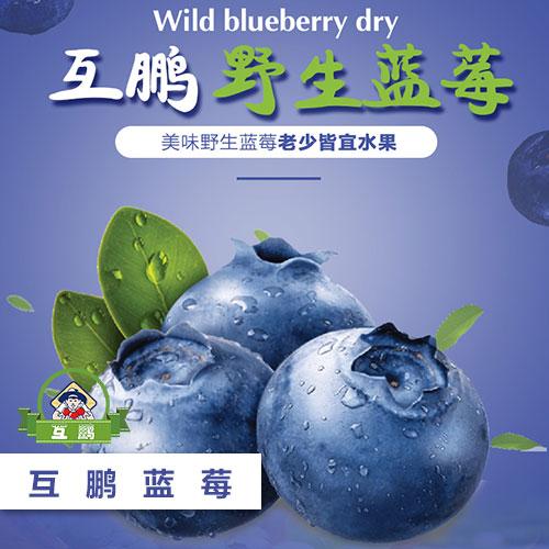 BG大游视讯蓝莓