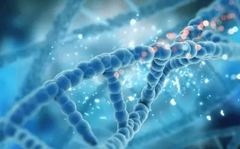 出现染色体异常情况能做美国试管婴儿吗