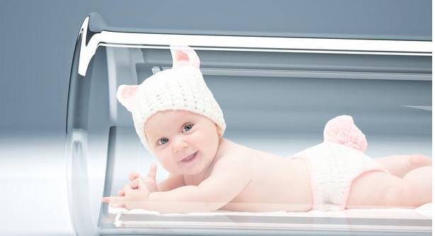 适合喂养试管婴儿的食品是什么