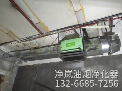 南京油烟净化器安装案例·向阳渔港(江东店)