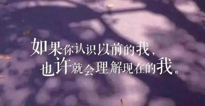 威盾匠心 (5)