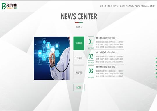 医药公司网演示站点模板4
