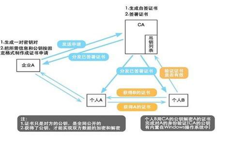 广西网络推广外包公司