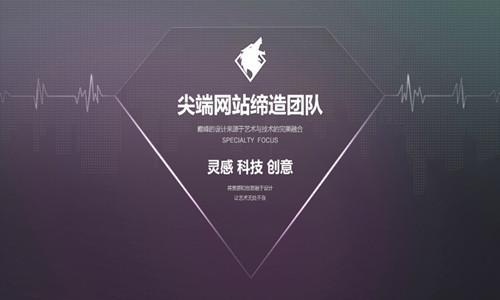 公司品牌网页设计2