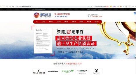 德溢实业营销型网站建设