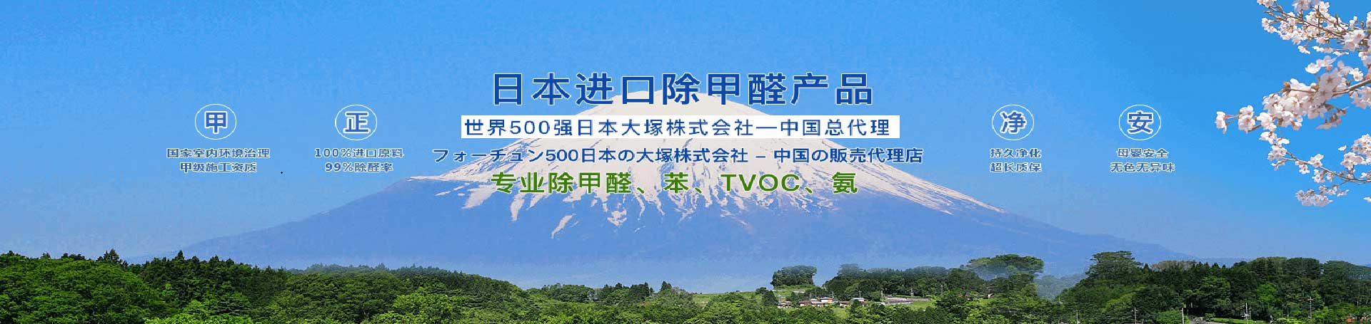 武漢除甲醛公司專注室內空氣污染治理20年單位