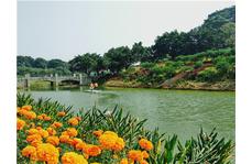现在才发现深圳市周边有这么一家好玩的农家乐