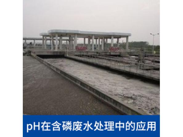 pH控制含磷廢水加藥過程