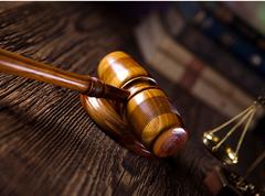 杨某等20余被告人人涉开设赌场罪案件