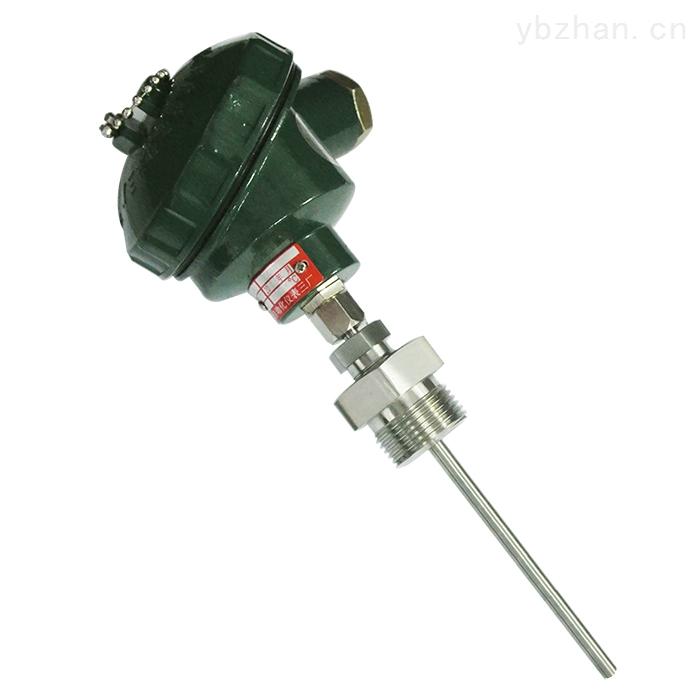 WZP-221装配式热电阻