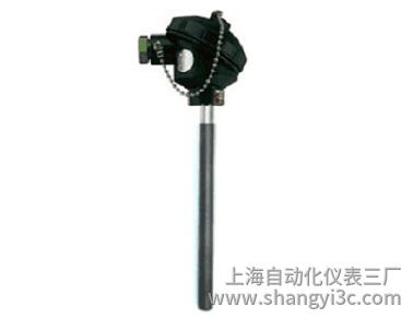 WZPN-130无固定涂层耐磨热电阻