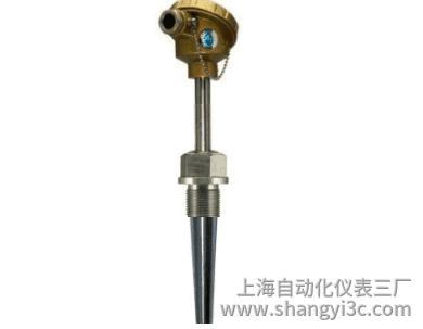 WRNN-631固定螺纹锥形套管耐磨热电偶