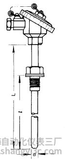 WRR-230双铂铑热电偶安装图片及尺寸
