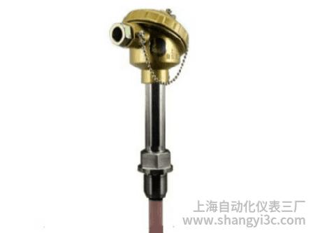固定螺紋裝配式熱電偶