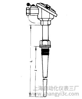 WZP-621A固定螺纹锥形套管防溅式热电阻安装图片