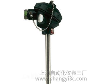 WZP-130无固定防水接线盒热电阻