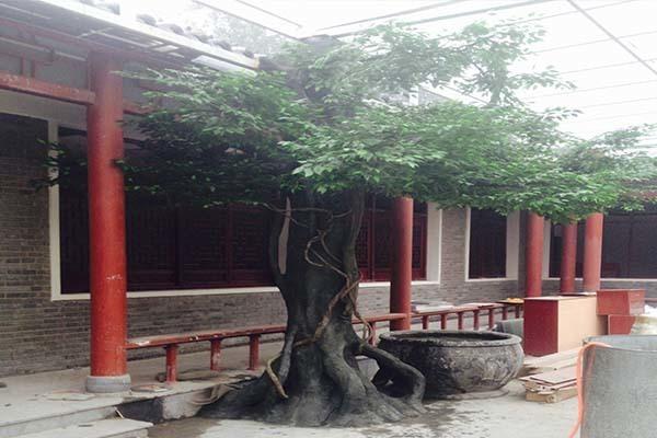 水泥雕塑树