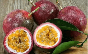 百香果种植技术,品种选择和果园规划