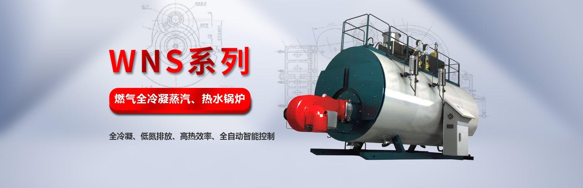 燃氣冷凝式蒸汽、熱水鍋爐