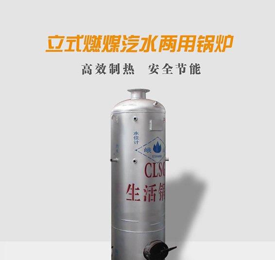 立式燃煤汽水兩用鍋爐