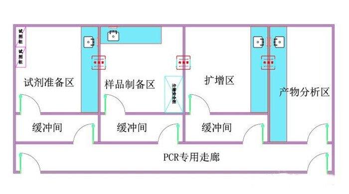pcr实验室设计图欣赏