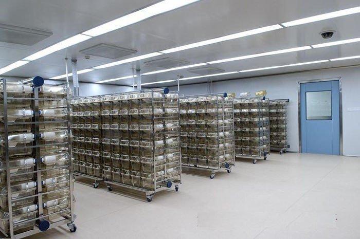 动物实验室设计规范与标准