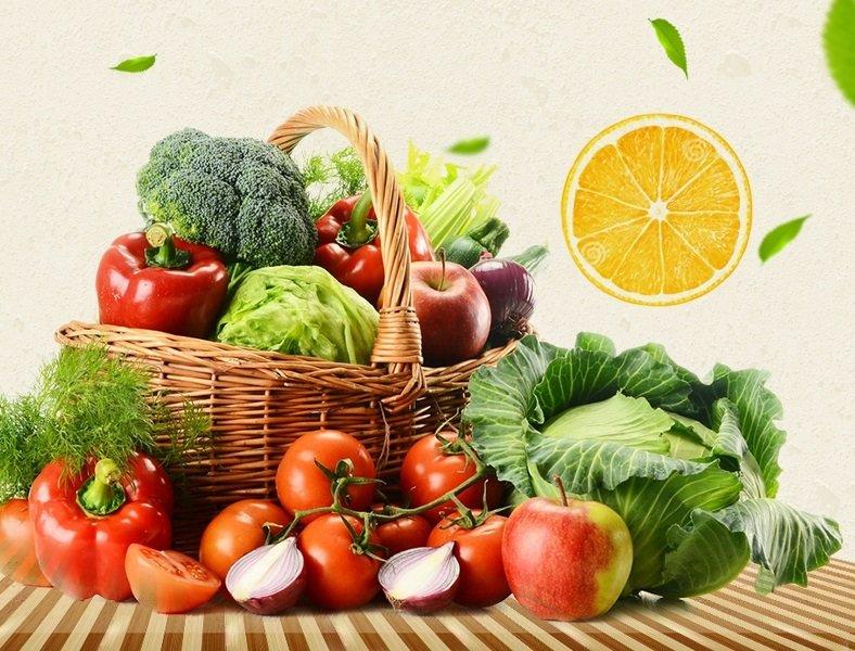 蔬菜种植常见病害及防治