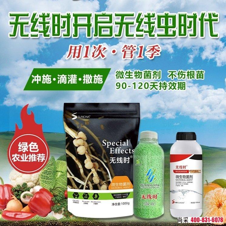 """治大姜根结线虫药建议可选用""""无线时"""",一瓶一亩地,安全绿色,用1次管1剂,作物任何时期均可用。"""