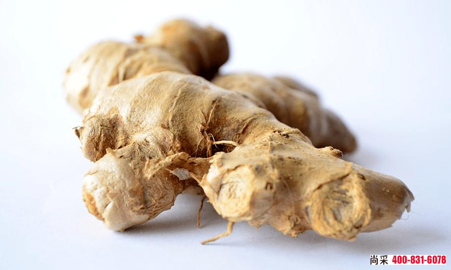 大姜的种植种,姜瘟病和根结线虫是大姜种植过程中的两大主要病虫害