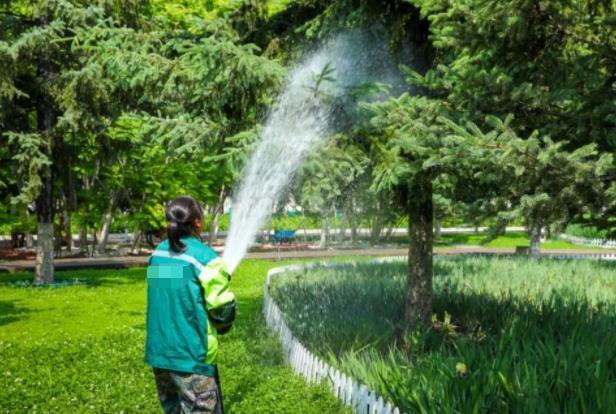 绿化管护工作