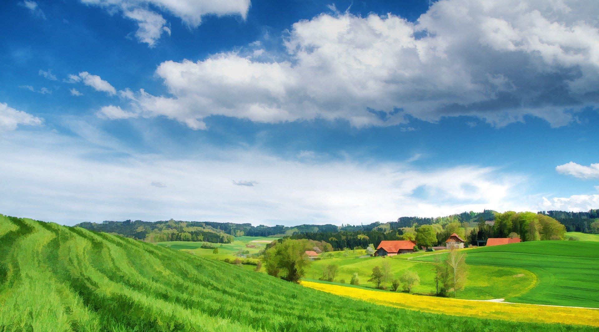 园林绿化管护