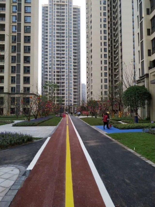 城市绿化管理条例