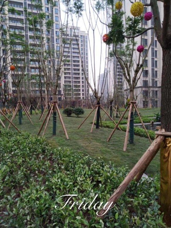 园林景观施工