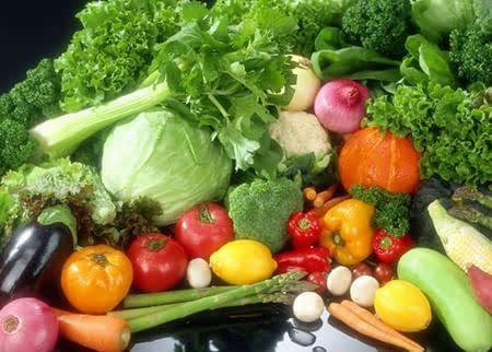 果蔬臭氧机在蔬菜水果贮藏中的应用