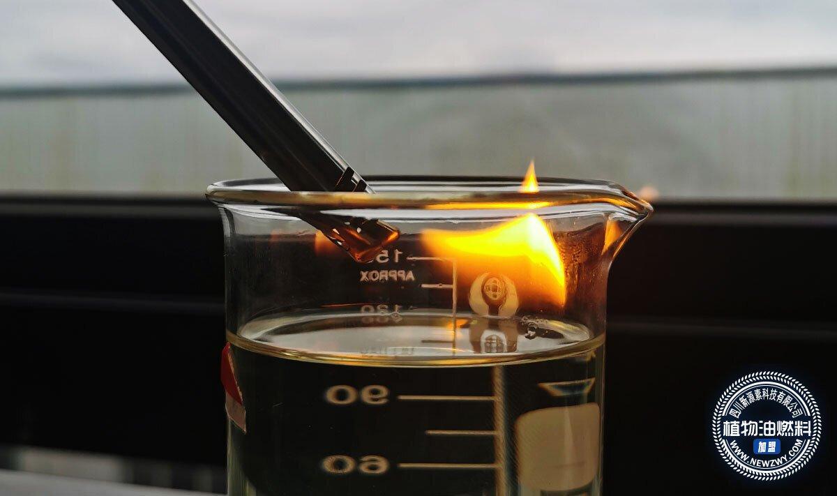 植物油无醇燃料加盟费用明细