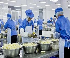 食品厂臭氧机的特性