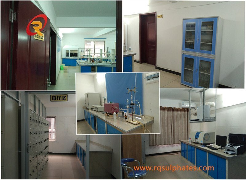 Our factory Lab