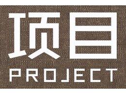 项目经理团队