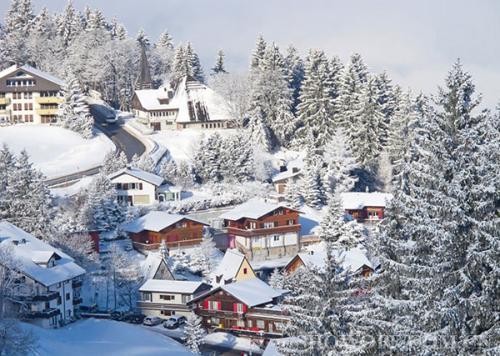 瑞士维多利亚管理学院MBA