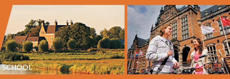 工商管理EMBA项目,企业家学者DBA项目,荷兰商学院大学