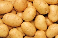 马铃薯1810