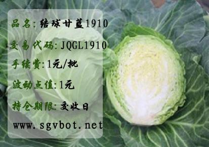 结球甘蓝1910