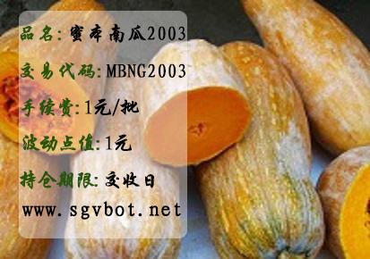 蜜本南瓜MBNG2003