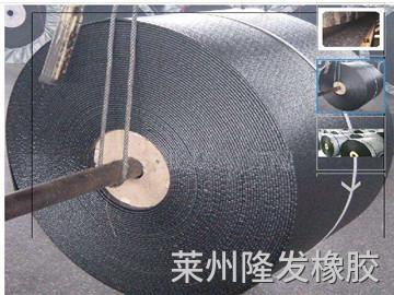 斗提机钢丝胶带