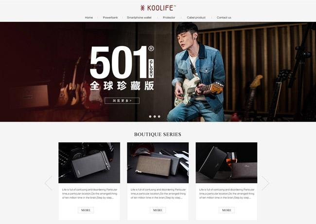 广州外贸网站设计找天青科技