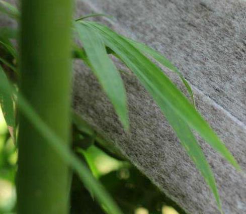 竹炭纤维工作服的6大优点