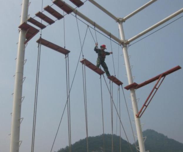 拓展训练项目:团队桥